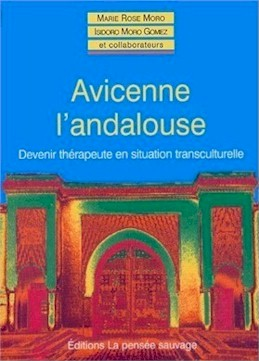 Avicenne l'andalouse